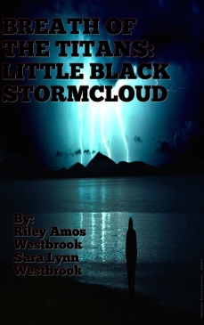 2BlackStormCloud