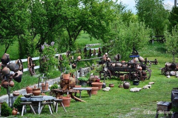potter's yard