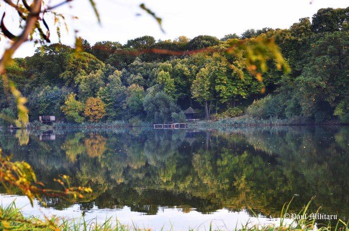 beyond the lake house